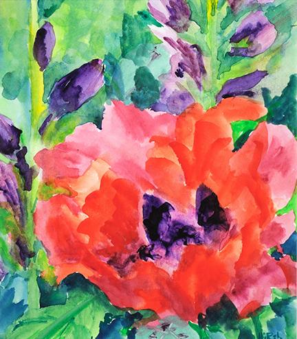 Cathy Hirsh Oriental Poppy 6x7 72 dpi